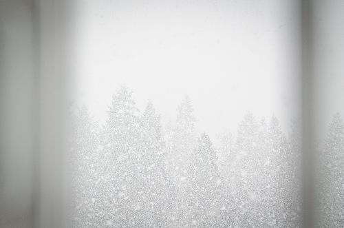 20120115.01.jpg