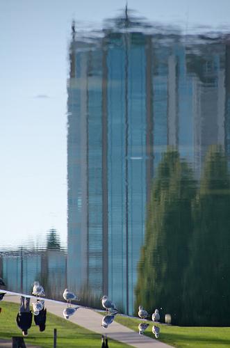 20120204.01.jpg